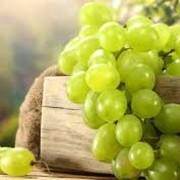 Виноград зеленый фото