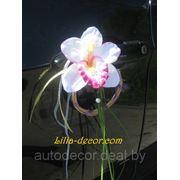 На ручки с орхидеями фото