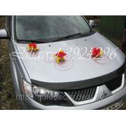 Ротанговые цветы красный фото