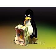 Установка, настройка ОС (заказчика) семейства Unix фото