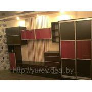 Изготовление корпусной мебели фото