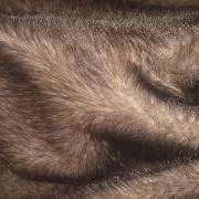 Мех норки, песца, чернобурки, енота, блуфроста. Оптовые цены. фото