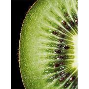 BIOENERGIA - уход с витамином «С» от EGIA фото