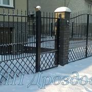 Ворота распашные в Калининграде фото