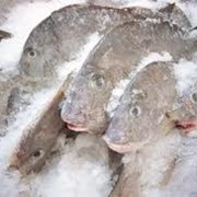 Мороженая рыба, оптом фото
