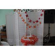 фото предложения ID 1504061