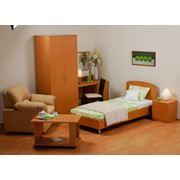 Мебель для гостиниц «Статус» фото