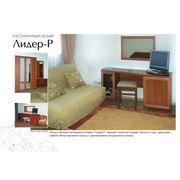 Мебель из серии Лидер в рамке фото