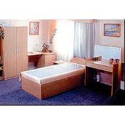 Гардеробы кровати диваны столовые фото