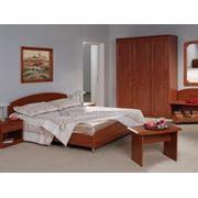 Мебель гостиничная серия Лагуна фото