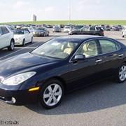 Lexus ES330 2005 год фото