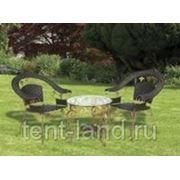Комплект мебели «Виноград»арт:А 45/2.76 фото