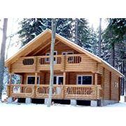 Сруб деревянного дома из оцилиндровки фото