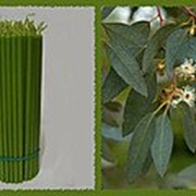 Свеча восковая №100 зеленая с ароматом эвкалипта фото