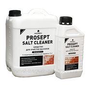 PROSEPT SALT CLEANER - удалитель высолов с минеральных поверхностей фото