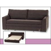 Двухместный диван-кровать Мадера. фото
