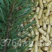 Пеллеты из хвойных пород дерева фото