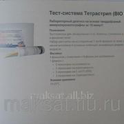 Тест-система для обнаружения E.Coli, Rotavirus, Coronavirus. Criptosporidium Тетрастрип BIO K156 фото