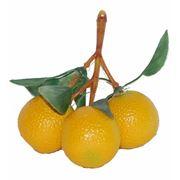 Кисть лимонов круглых фото