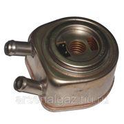 Теплообменник ГАЗ-33104/3309/ПАЗ-МАЗ-4370 двигатель ММЗ-245 ЕВРО-3 ТЖМ-6500 фото