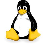Виртуальный выделенный Linux сервер фото