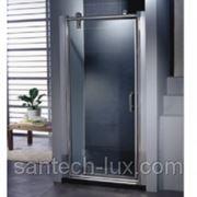 Appollo TS-0509B Душевая дверь 75/80/90/100 см фото