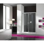 Душевая дверь Sanplast D4/VE-140-S sm фото