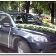 Оформление свадебных автомобилей
