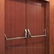 Деревянная противопожарная дверь EI-60 двупольная глухая фото