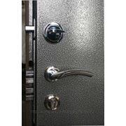 Дверь металлическая «Бастион» фото
