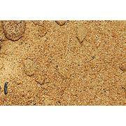 Песок мытый речной карьерный. фото