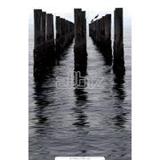 фото предложения ID 1695900