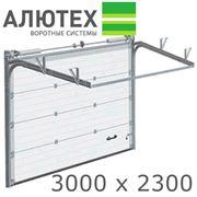Ворота гаражные секционные АЛЮТЕХ /Alutech Classic 3000x2300/ фото
