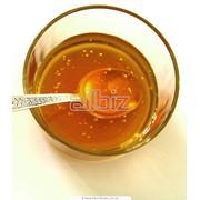 Мед цветочный фото