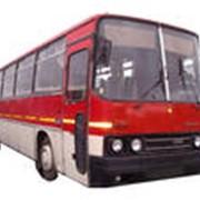 Запчасти к автобусам Икарус фото