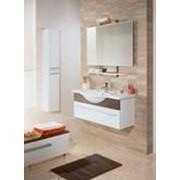 Мебель для ванных фото