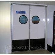 Маятниковая Дверь Двустворчатая фото