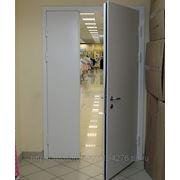 Дверь противопожарная двустворчатая 1300 х 2100 фото