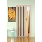 Дверь гармошка Лучана выбеленный дуб+вставка венге. фото