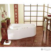 Акриловая ванна PoolSpa LEDA 160х100 L/R фото