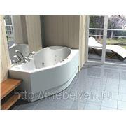 Ванна акриловая Акватек Таурус 170х100 L/R фото