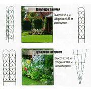 Арки садовые фото