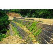 Система Зеленый Террамеш 4х2х1 фото