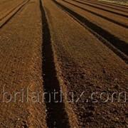 Пахотная земля 60 га, Орхей, Крихана фото