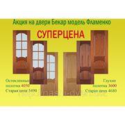 Двери Бекар «Фламенко» посуперцене!