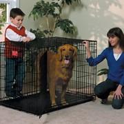 Двухдверная клетка для собак Midwest Life Stage Double Door (107х71х79см) фото