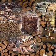 Дрова сухие от производителя, продажа, опт Украина фото