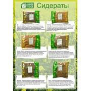 Фасовка различных сыпучих продуктов от 100 до 1000 г., в том числе зерновых фото