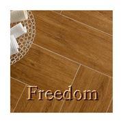 Italon Freedom (Италон Фридом) фото