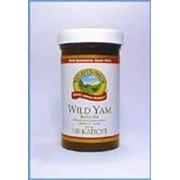 Wild Yams (Дикий ямс) фото